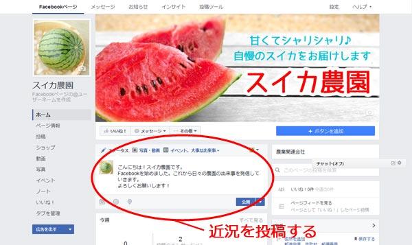 農園のFacebookページに記事を投稿