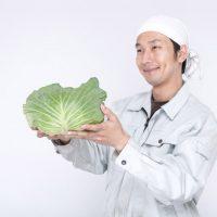 農産物の安定的販路!農家さんのネット販売5つのメリット