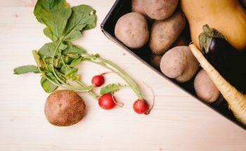 農家さんの直販に必須!同梱パンフレットで野菜・果物の魅力を伝える