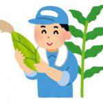 野菜、果物ネット販売の成功事例!成功農園のホームページは何が違う?