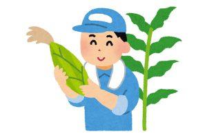 作物を眺める農家さんのイラスト