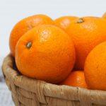 ネット通販で規格外の野菜、果物を活用する方法!訳あり品の注意点