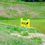 正しい獣害対策~防護柵を設置してイノシシの被害を防ごう~