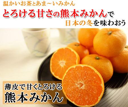 温かいお茶とあまーいみかん。とろける甘さの熊本みかんで日本の冬を味わおう。