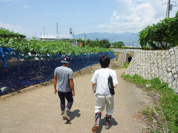 岩崎園さんに畑を案内してもらう農ログメンバー
