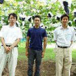 ぶどう農家、岩崎園さんのネットショップがオープンしました!