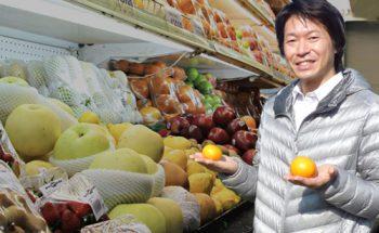 新規事業始めます!野菜・果物を農家さんの代わりに農ログが販売代行