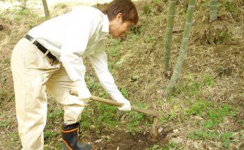 春といえばたけのこ!初めてのたけのこ掘りに挑戦しました!