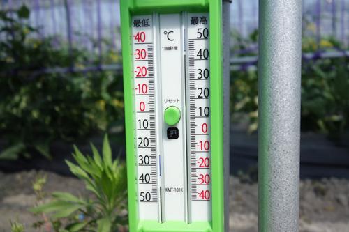 気温40度を超える温度計の写真