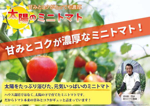 「太陽のミニトマト」のアピール用ポップ